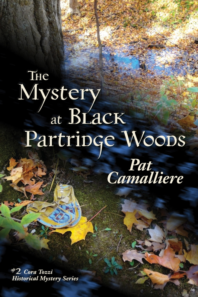 The Mystery at Black Partridge Woods by Pat Camalliere
